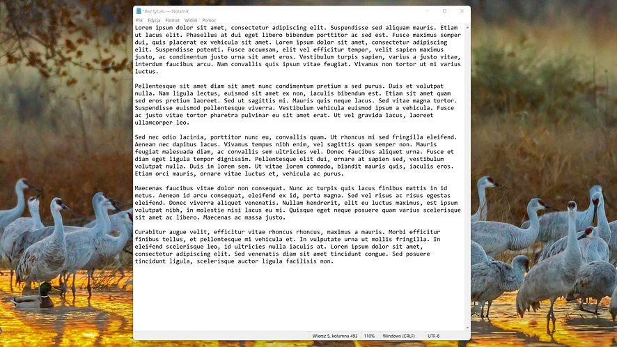 Notatnik w Windows 11