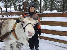 Zapraszamy na świąteczne spotkanie z Nelą Małą Reporterką! Opowieści o Laponii, białych reniferach i Świętym Mikołaju