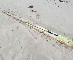 Niesamowite odkrycie na plaży. Mogą to być części zaginionego samolotu