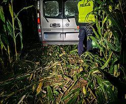 Pościg zakończył się w polu kukurydzy. Kierowcy przewozili nielegalnych imigrantów