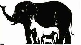 Ile zwierząt widzisz na obrazku? Internetowa łamigłówka