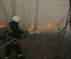 Pożar w Czarnobylu. Ogień objął 20 tys. hektarów