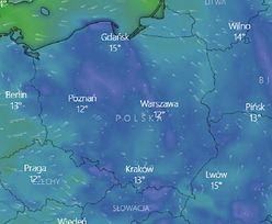 Pierwsze przymrozki w Polsce. To już koniec lata
