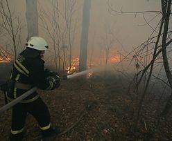Wrócił pożar w Czarnobylu. Chmura dymu dotarła aż do Kijowa. Czy grozi nam skażenie?