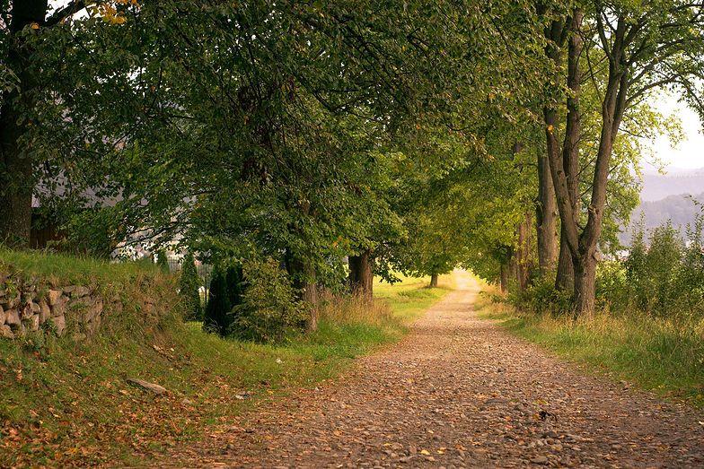 Pogoda długoterminowa na wrzesień. Mamy dobre informacje. Jaki będzie koniec lata?