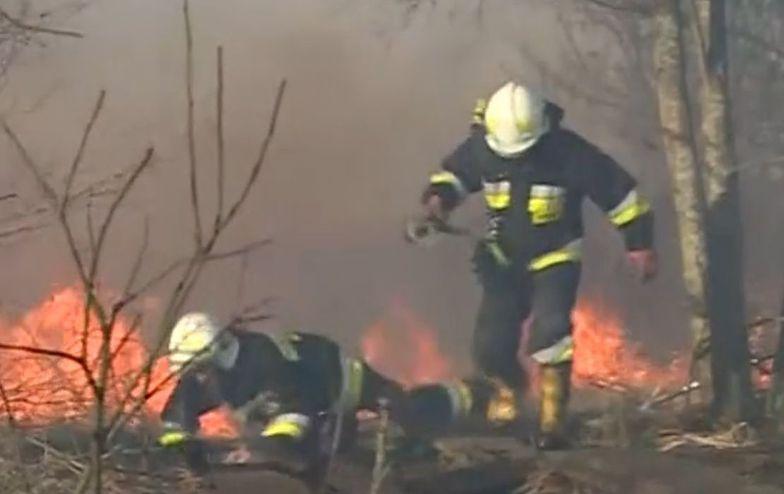 """Pożar w Biebrzańskim Parku Narodowym jak """"bombowiec"""". Nadludzki wysiłek strażaków"""