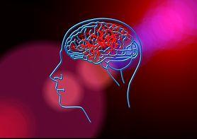 Memotropil - wskazania, działanie, udar mózgu, dysleksja, przeciwwskazania, środki ostrożności, możliwe działania niepożądane