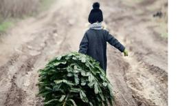 Najdziwniejsze zwyczaje świąteczne z różnych stron świata