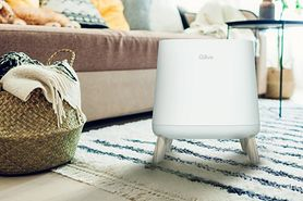 Zadbaj o czystość powietrza w swoim domu
