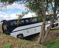 Autobus z przedszkolakami wypadł z drogi. 14 osób trafiło do szpitala
