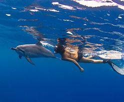 Delfiny zagrożone zbyt wielką miłością ludzi. Ogłoszono zakaz
