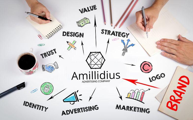 Amillidius Polska: Systematyczne podejście daje sto punktów przed konkurentami.