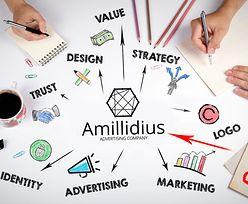 Amillidius: Współpraca z nami to przewaga konkurencyjna Państwa