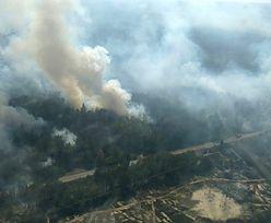Pożar w Czarnobylu. W zamkniętej strefie płonie 10 hektarów lasu, władze Ukrainy alarmują