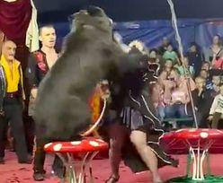 Sceny grozy w cyrku. Niedźwiedź zaatakował kobietę