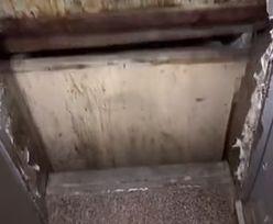 Kulturowy szok. Wideo z windą w Egipcie ma już 7 milionów wyświetleń