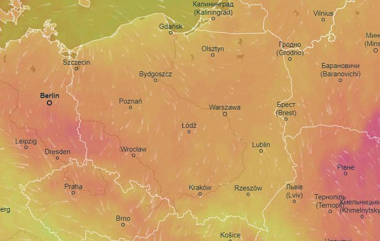 Pogoda na poniedziałek 15 czerwca. Zachmurzenie i przelotne opady