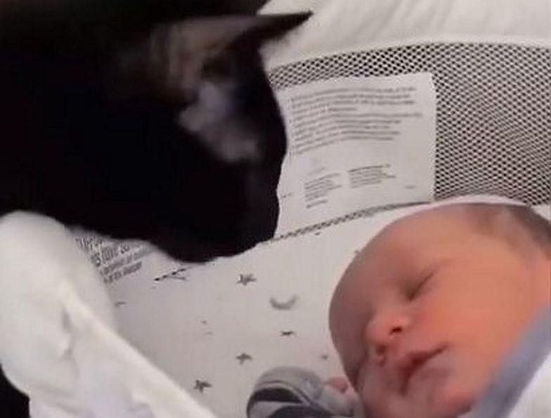 Do śpiącego dziecka podszedł kot. Nagranie to hit