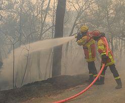 Wielkie pożary we Francji. Strażacy walczą z żywiołem na Lazurowym Wybrzeżu