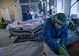 """Prawie pół tysiąca zgonów z powodu COVID-19. Prof. Boroń-Kaczmarska: """"Mamy więcej osób z ciężkim przebiegiem klinicznym COVID-19"""""""