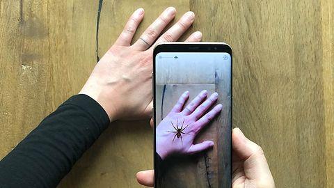 Boisz się pająków? Ta aplikacja może ci pomóc