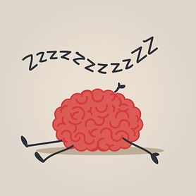 8 fascynujących faktów na temat snu