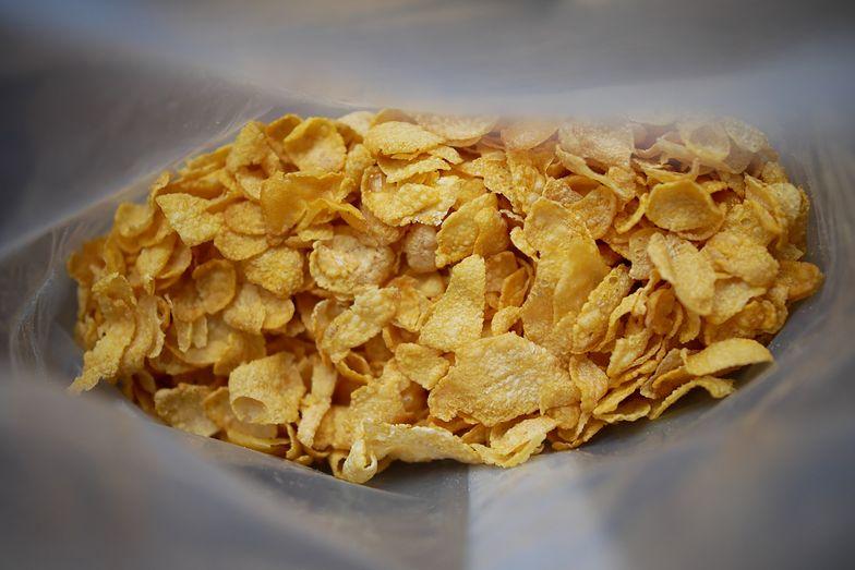 Kotlet schabowy w płatkach kukurydzianych. Uwielbiają go dzieci i dorośli