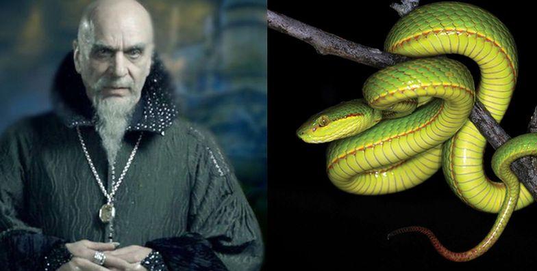 Legendarny założyciel Hogwartu, czarodziej Salazar Slytherin i żmija nazwana na jego cześć