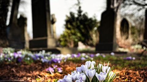 1 listopada, Wszystkich Świętych. Mapy cmentarzy i internetowe wyszukiwarki grobów