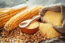 Mąka kukurydziana - składniki odżywcze, właściwości zdrowotne, zastosowanie, przepis na ciasto