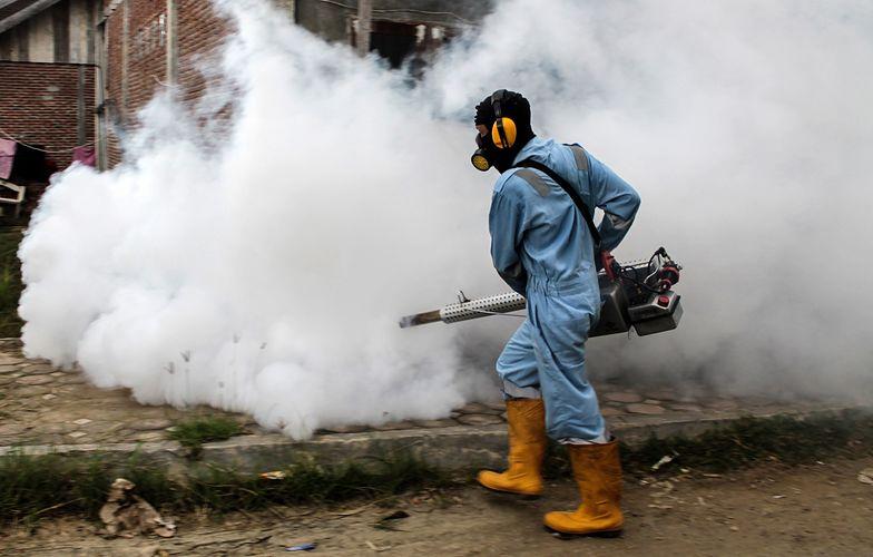 Walka z dengą w Indonezji. Groźny wirus zbiera żniwo