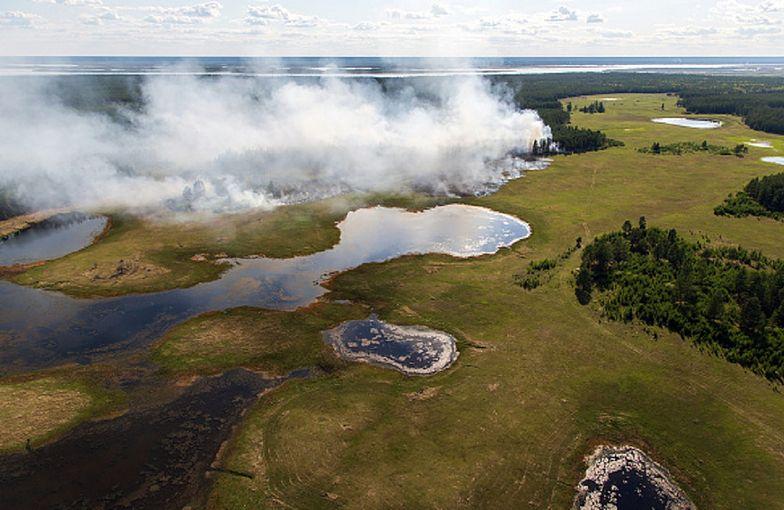Rosja walczy z ogromnymi pożarami. Ogłoszono stan wyjątkowy