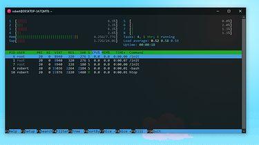 WSL czyli Linux na Windowsie - Htop działający na wsl