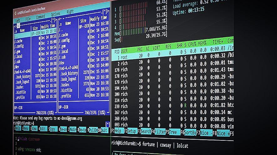 Wkrótce Windows 10 będzie jeszcze przyjaźniejszy dla Linuxa, fot. Linux.com