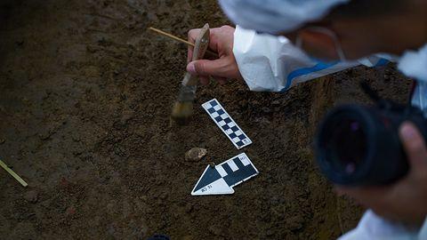 Polacy mają narzędzie do wykrywania skarbów. Pomoże im sztuczna inteligencja