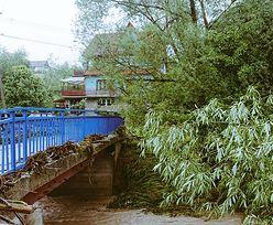 Powalone drzewa, zalane domy. Justyna Kowalczyk pokazała skutki nawałnicy