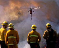 Kalifornia w ogniu. Pożar w Los Angeles. Ewakuacja kilkudziesięciu tysięcy osób