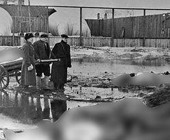 Ilu było kanibali w oblężonym Leningradzie?