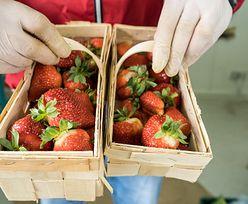 Dlaczego czereśnie i truskawki są w tym roku tak drogie? Ekspert odpowiada