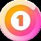 1Money icon