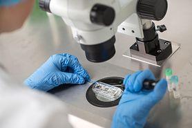 Embriotransfer
