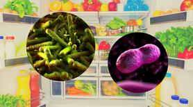 Jakie niebezpieczeństwa czyhają na nasze zdrowie w lodówce?