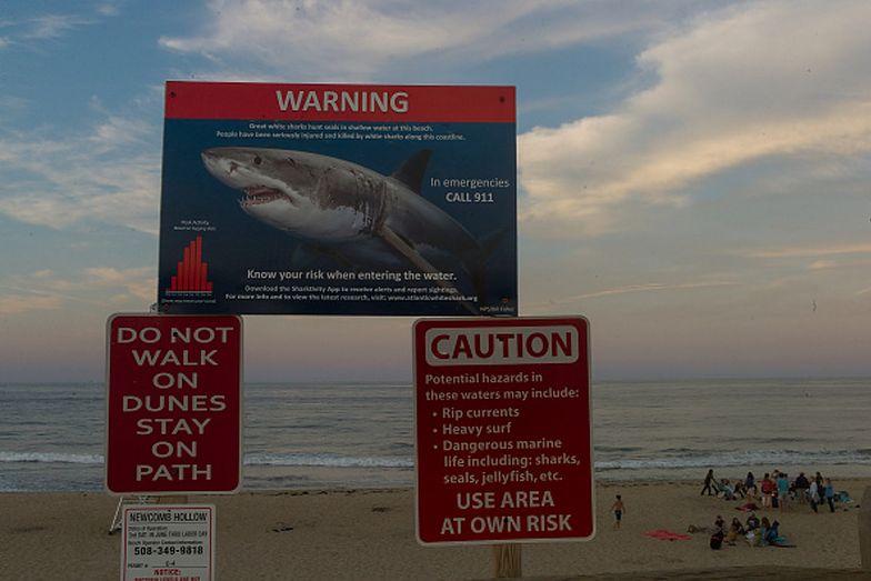 Atak rekina miał miejsce, kiedy 26-letni mężczyzna poszedł surfować