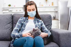 Alergik i jego mieszkanie