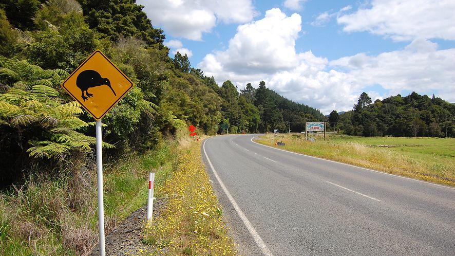 Znak ostrzegający przed kiwi z depositphotos
