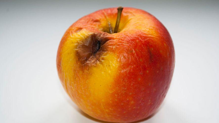 Apple iOS 13.1.2 znów z błędami (fot. 123RF)