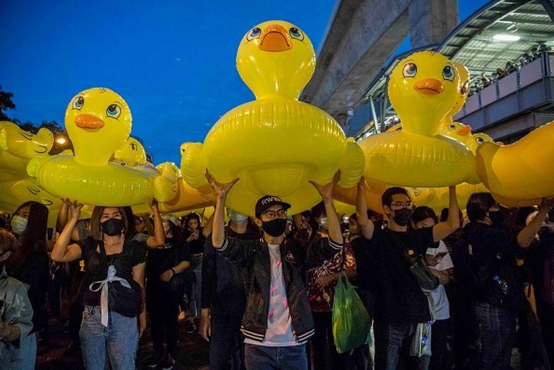 Antyrządowe protesty. Uczestnicy przynieśli nadmuchiwane kaczki