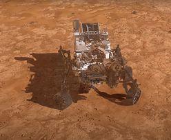 Niezwykłe nagranie. NASA pokazała, jak Perseverance ląduje na Marsie