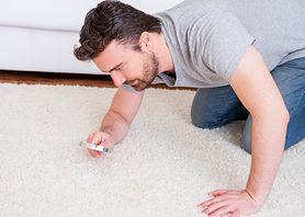 Jak pozbyć się roztoczy w domu?