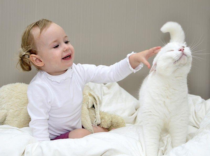 Kot i niemowlę
